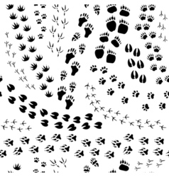 Animal Track Seamless Pattern vector