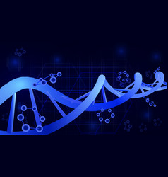 Dna helix 3d science education genetics vector