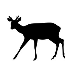 sika deer with horns black silhouette vector image