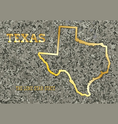 Texas in stone vector