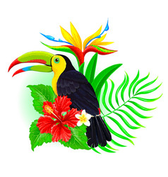 toucan with palm leaf and hibiscus vector image