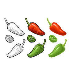 Whole and slice pepper jalapeno color vector