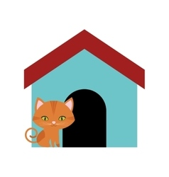 cat feline curious small colored house vector image vector image