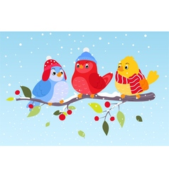 Colorful birds on winter scene vector