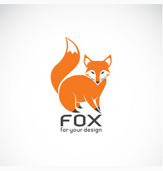 fox design on white background wild animals vector image