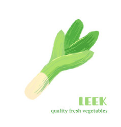 fresh leek isolated on white background vector image