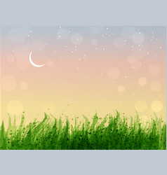 leaves of grass and stars in sunrise sky vector image