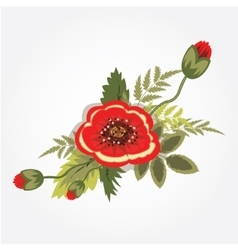 Red poppy bunch Bouquet boutonniere Floral vector image