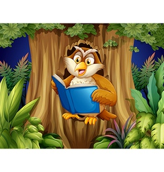 An owl reading a book at tree vector