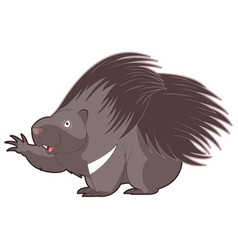 cartoon happy porcupine vector image