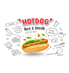 hot dog hot fresh with drawing food design vector image