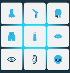 part icons colored set with skull nose oral vector image
