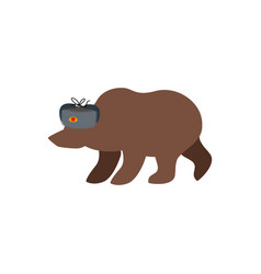 russian bear in fur hat russia national wild vector image