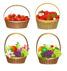 set fruit baskets vector image
