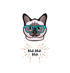 Siamese cat in smart glasses cat geek vector