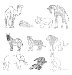 the image of animals animals vector image