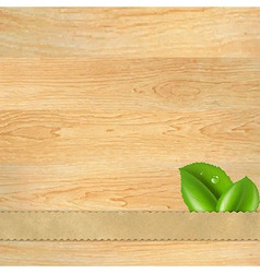 Wood Texture With Ribbon And Leaf vector image
