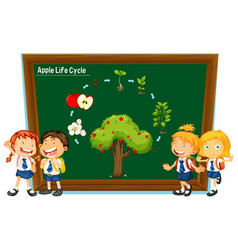 students and diagram of apple life cycle vector image vector image