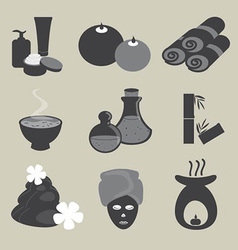 Basic Spa Icons Set vector image
