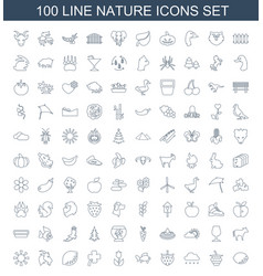 100 nature icons vector image