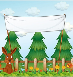 A bunny at the garden below the empty banner vector image
