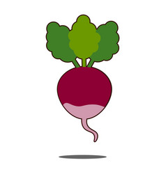 beet icons set in flat style beetroot vector image