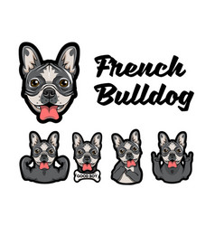 French bulldog with different gestures vector