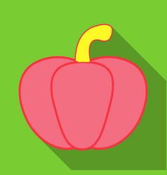 pumpkin autumn halloween pumpkin vegetable vector image