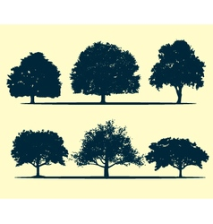 Oak tree silhouette vector image