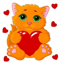 Cute cat with a heart vector image vector image