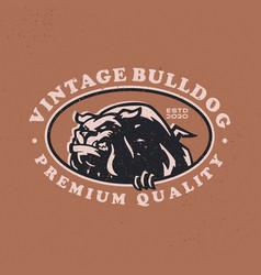 bulldog vintage retro badges logo icon vector image