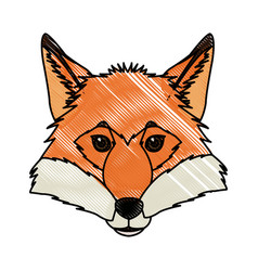 Head fox animal wildlife nature image vector