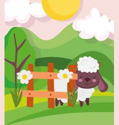 sheep fence flowers trees meadow farm animal vector image