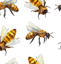 Watercolor seamless pattern with bee vector image
