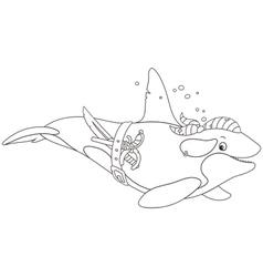 Killer whale pirate vector