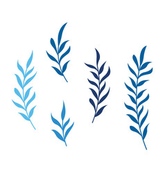 beauty leaf icon design vector image