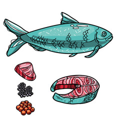 bluefish with products vector image