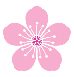 Cherry blossom flower vector