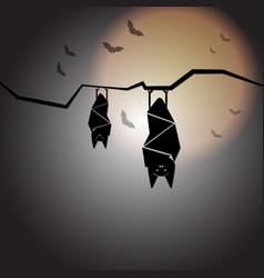 Create halloween night with sleep bats vector