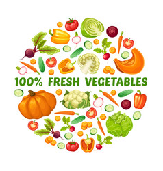 fresh farm food round concept vector image