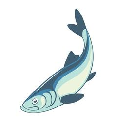 herring fish vector image