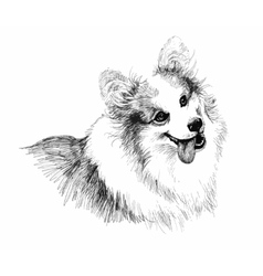 Puppy dog hand drawn sketch vector image