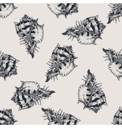 Hand drawn vintage exotic shell abstract pattern vector image vector image
