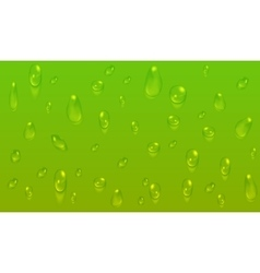 Green natural background with water drops vector