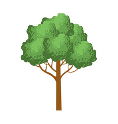 green tree with a rounded crown element of a vector image