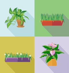 Home decorative flowers icons set digital image vector