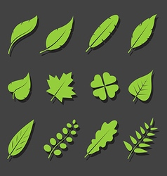 Leaves green icon set vector