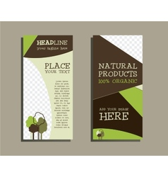Organic Brochure Template vector image
