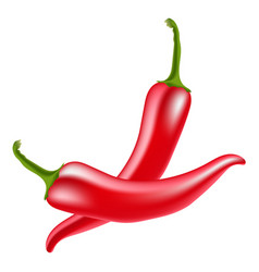 Red hot chili peppers on white background vector