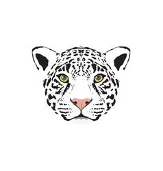 a white jaguar head vector image